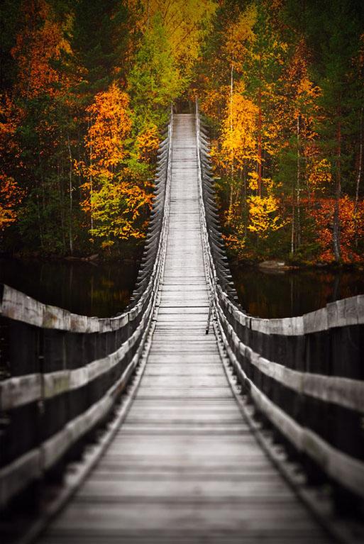 Bridge_into_Autumn_by_jjuuhhaa