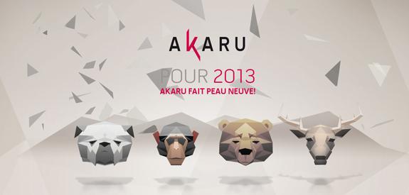 Voeux Akaru