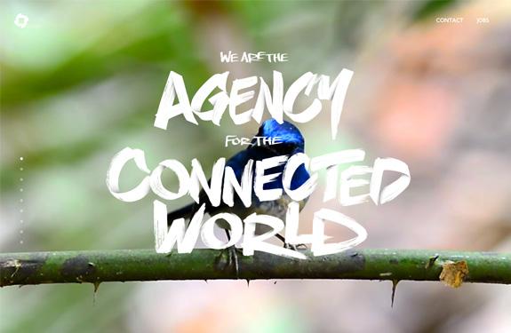 blitz-agency-1